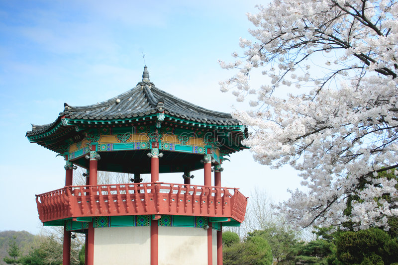 Koreaanse Pavillion door bomen in bloei. stock fotografie