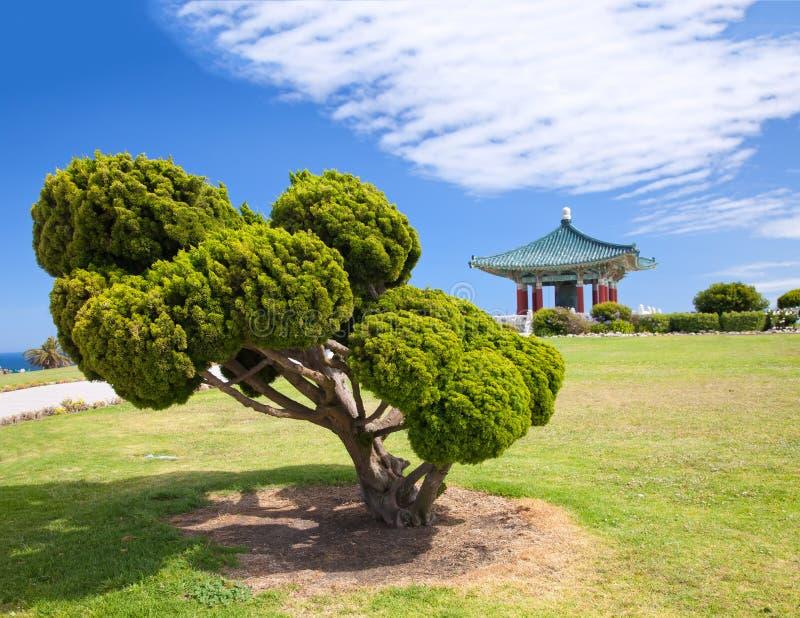 Korean Bell of Friendship pagoda and park stock photo
