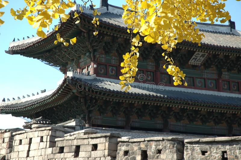 Korean city gate with autumn leaves in Seoul royalty free stock image
