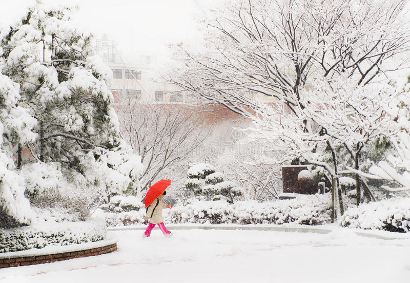 Korean girl walking on snowy day holding red umbrella stock photos