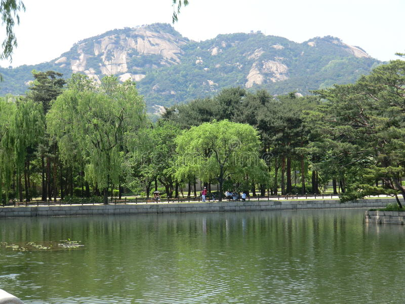 Korean Lake Trees and Mountain in Seoul. A beautiful Korean lake in Seoul. A variety of trees on the bank and a mountain in the background with a clear sky. A stock photos