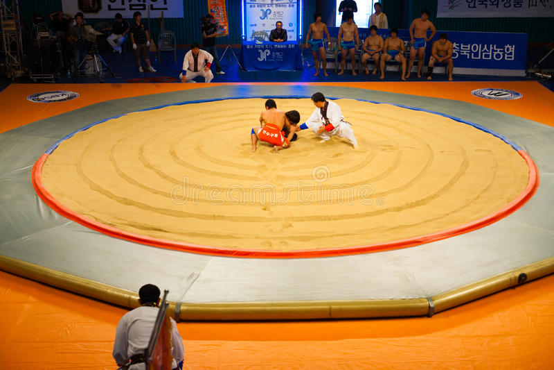 Korean Wrestling Ssireum Aerial Ring Start. JEUNGPYEONG, KOREA - SEPTEMBER 18, 2009: Unidentified ssireum wrestlers, the Korean national sport similar to sumo stock image