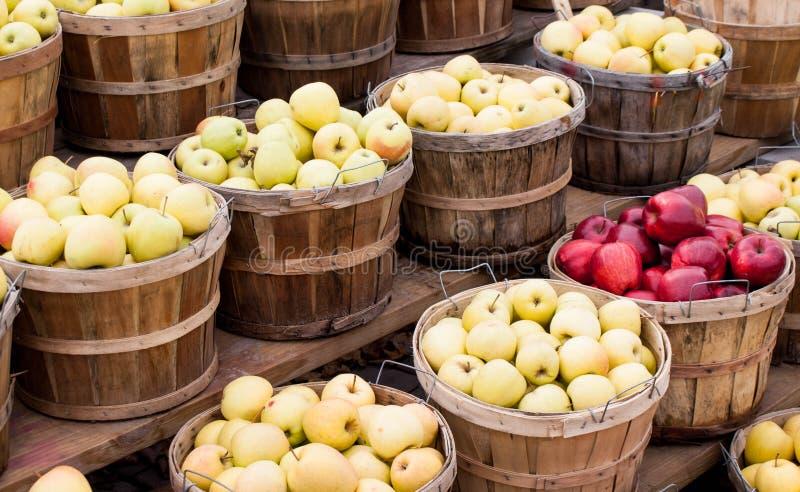 Korg av äpplen på lantgårdställningen arkivbild