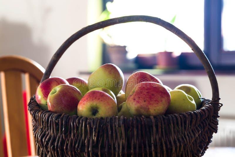 Korg av det sunda, läckra, bio hem- tillväxtäpplet royaltyfri fotografi
