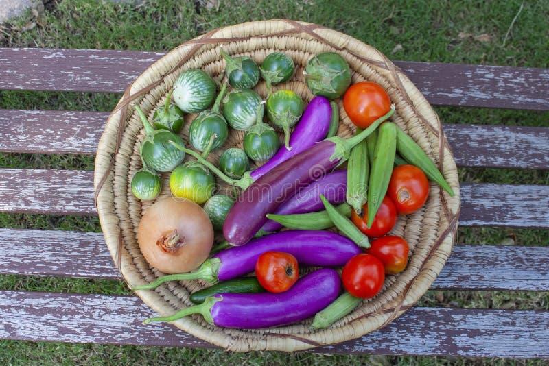 Korg av färgrika grönsaker inklusive thailändsk och japansk aubergine tomater för en lök och okra - bästa sikt fotografering för bildbyråer