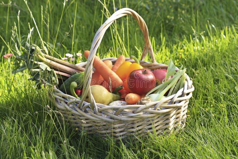Korg av frukter och grönsaker arkivfoto