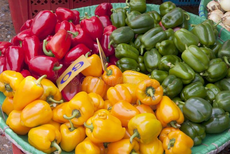 Korg av röda, gula och gröna paprikor arkivfoton