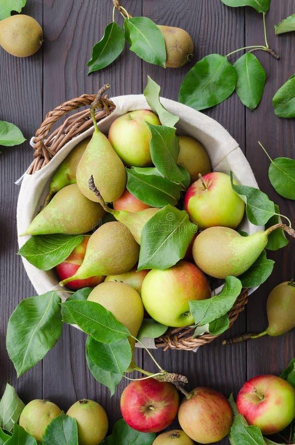 Korg med äpplen och päron på mörk träbakgrund royaltyfri fotografi
