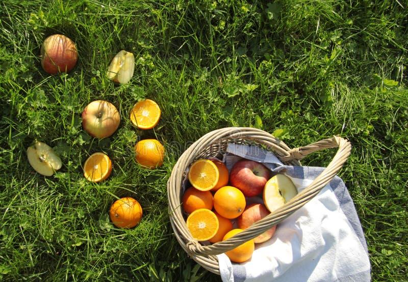 Korg med apelsiner och äpplen royaltyfri foto