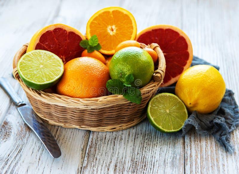 Korg med citrusa nya frukter royaltyfri fotografi