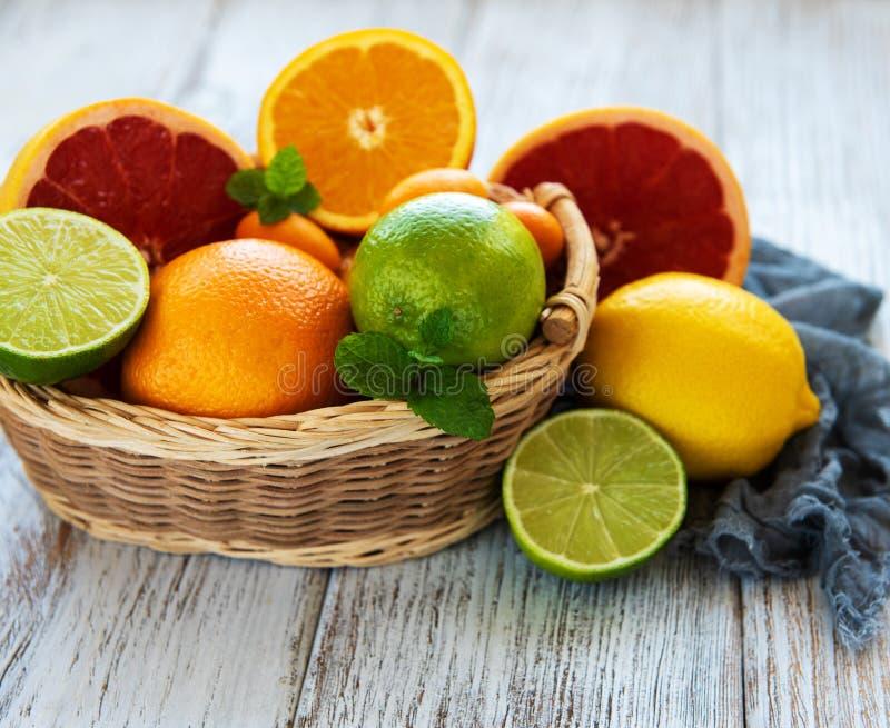 Korg med citrusa nya frukter arkivbild