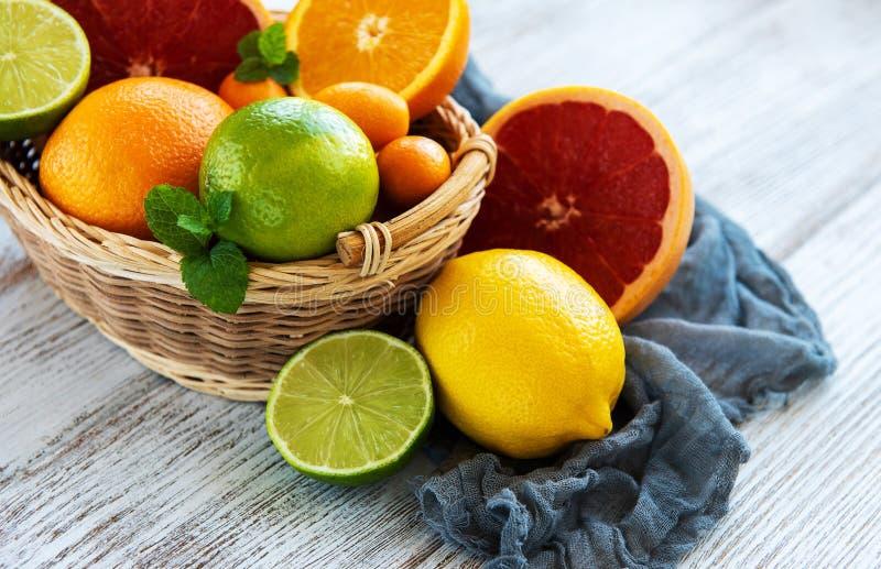 Korg med citrusa nya frukter royaltyfri foto