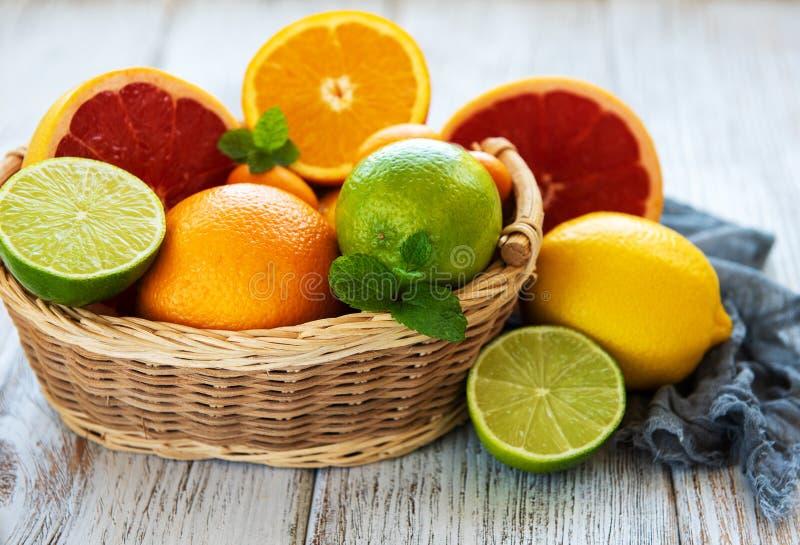 Korg med citrusa nya frukter royaltyfria foton