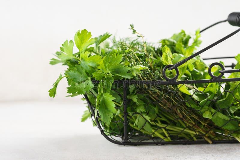 Korg med en variation av nya gröna kulinariska örter royaltyfri fotografi