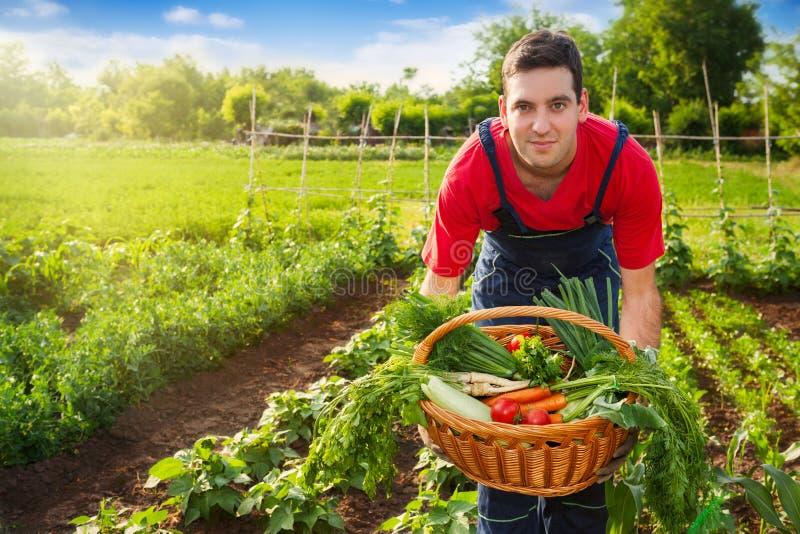 Korg med grönsaken i bondehänder royaltyfri foto