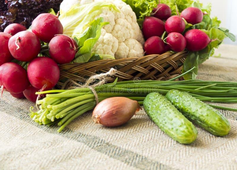 Korg med nya vårgrönsaker royaltyfri bild