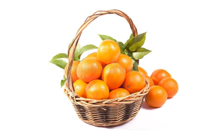 Korg mycket av apelsiner som isoleras på vit royaltyfria bilder