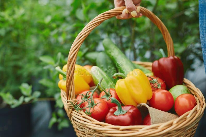 Korg mycket av grönsaker arkivfoton
