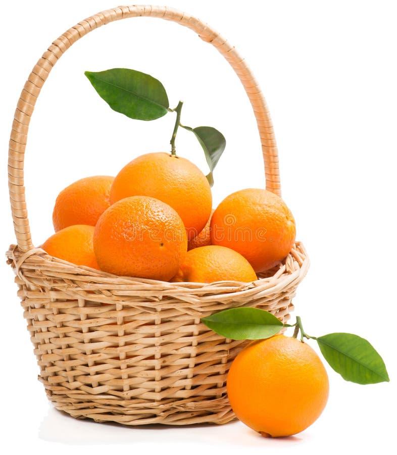 Korg mycket av mogna söta apelsiner. arkivfoto