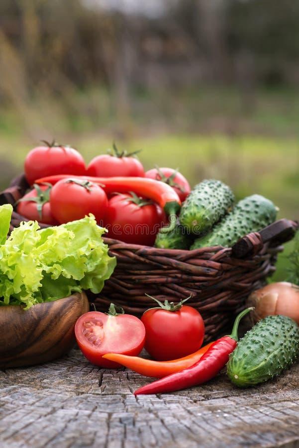 Korg och träplatta med nya grönsaker (tomater, cucumbe royaltyfria bilder