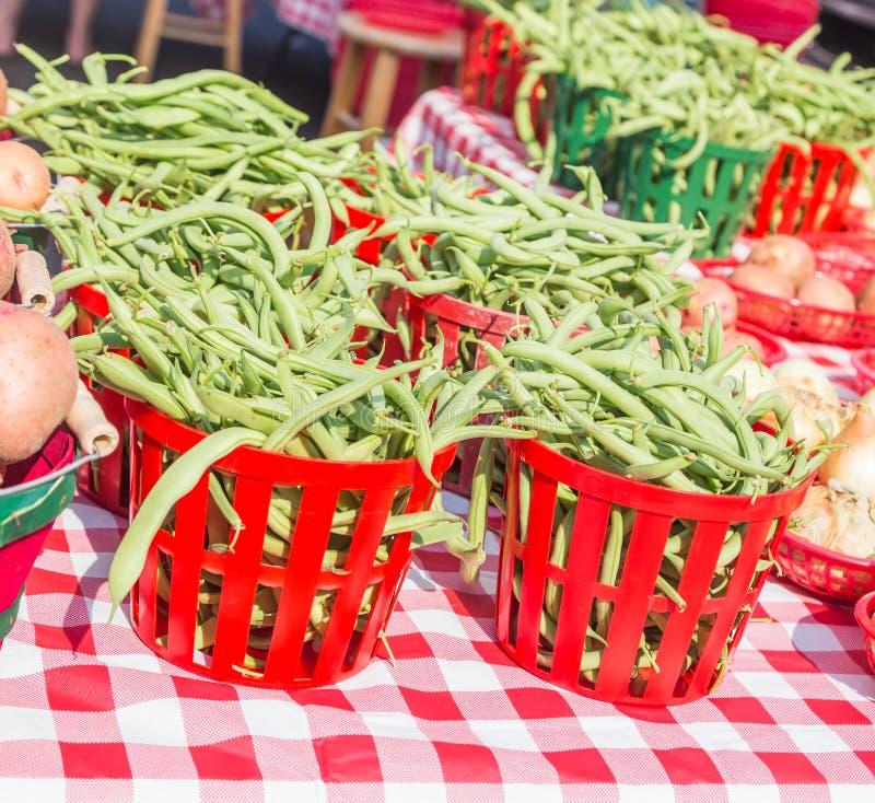 Korgar av nya Busch plötsliga bönor på lokala bönder marknadsför fotografering för bildbyråer