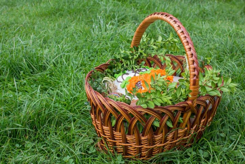 korgeaster gräs arkivbilder