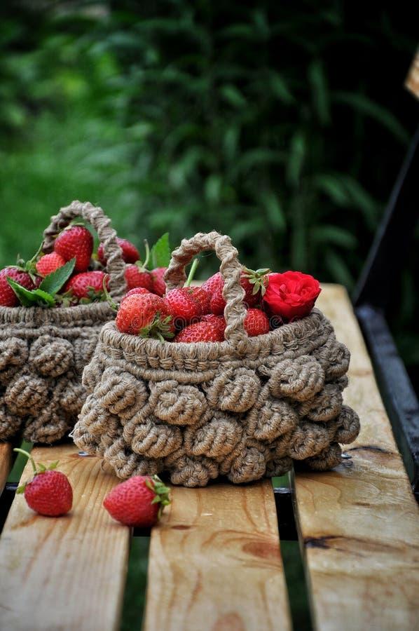 Korgen av nya jordgubbar på en bakgrund av gör grön trädgård- och trädfilialer fotografering för bildbyråer