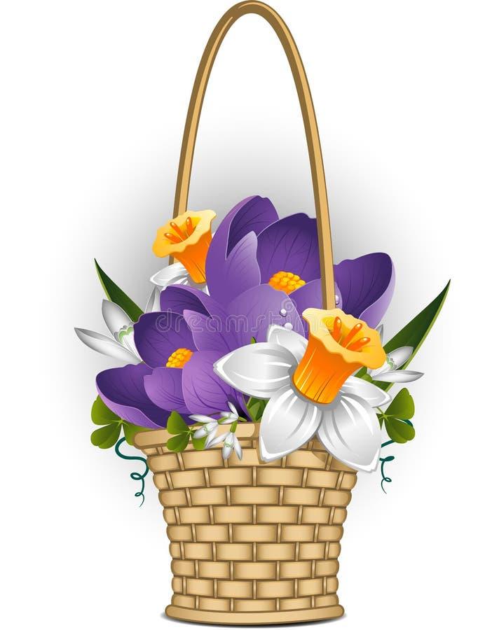 korgen blommar fjädern royaltyfri illustrationer