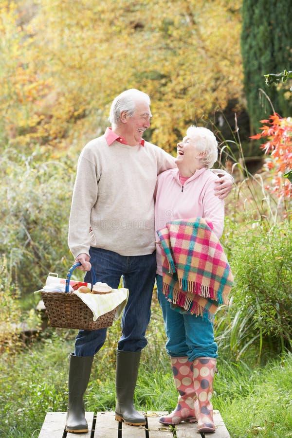 korgpar har picknick utomhus pensionären royaltyfri fotografi
