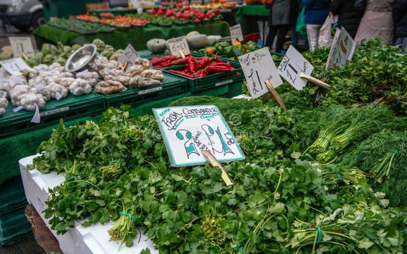 Koriander, dill, mintkaramell och andra nya gröna örter som visas på gatamatmarknaden, Lewisham, London arkivbild