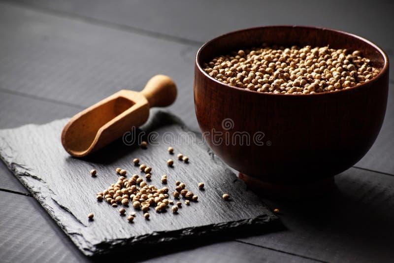 Korianderkoriandersamen stockfoto
