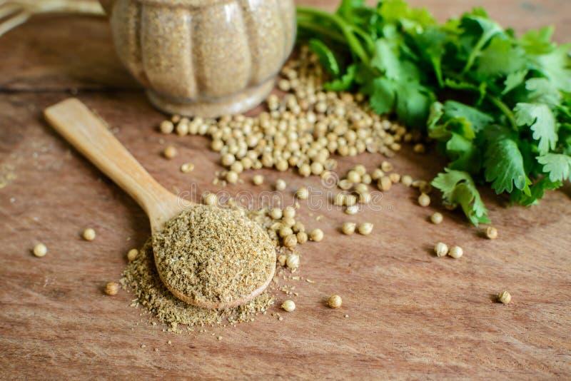 Korianderpoeder, Aromatische ingrediënten op rustieke houten lijst royalty-vrije stock afbeeldingen