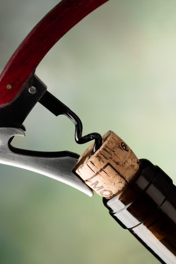 Korkskruv som korkar upp en flaska av rött vin arkivbild