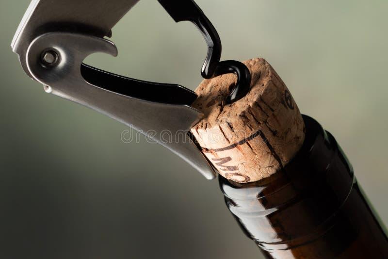 Korkskruv som korkar upp en flaska av rött vin royaltyfri fotografi