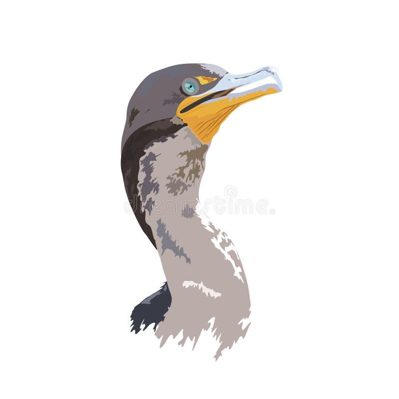 Kormoran, ausführliche und realistische Digital-Illustration der Florida-Everglades-Nationalpark-wild lebenden Tiere - lizenzfreie abbildung