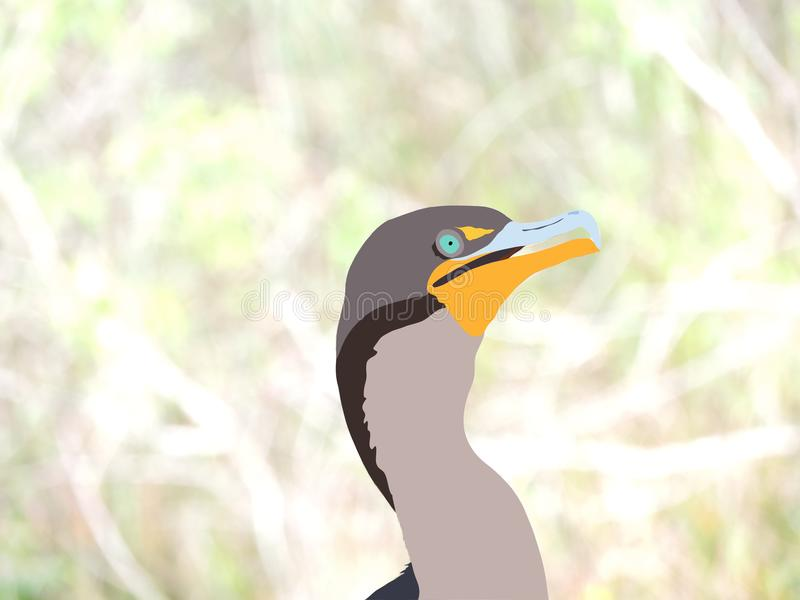 Kormoran-Digital-Illustration auf naturalistischem Hintergrund - Florida-Everglades-Nationalpark-wild lebende Tiere stock abbildung