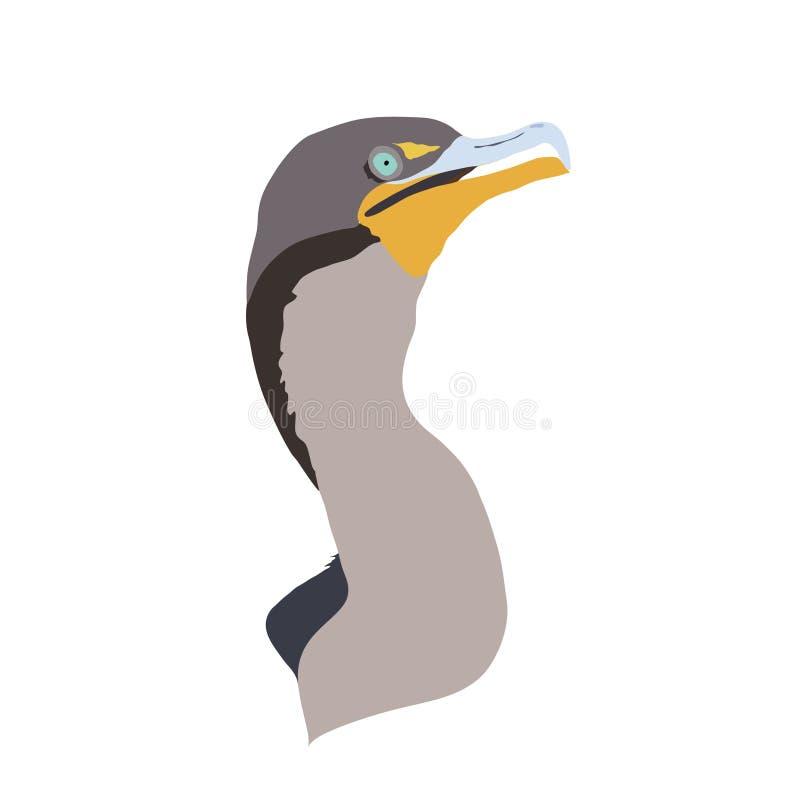 Kormoran, Florida-Everglades-Nationalpark-wild lebende Tiere - einfache Digital-Illustration lizenzfreie abbildung
