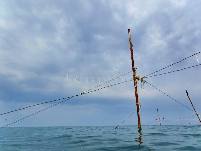 Kormoran på kuggar som rymmer fisknät royaltyfri bild