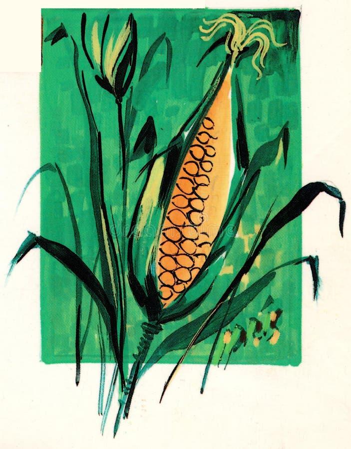 Kornähren künstlerisch gezeichnet in Grünes und in Orange lizenzfreie abbildung