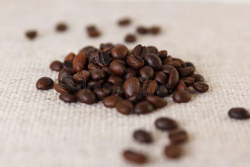 Korn av grillat kaffe royaltyfri bild