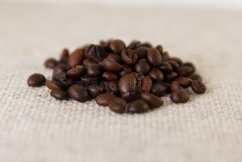 Korn av grillat kaffe arkivbild