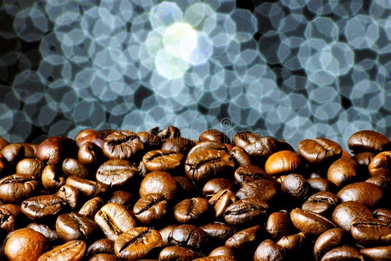 Korn av naturligt grillat kaffe, för förberedelsen av en läcker uppfriskande drink En härlig idérik brun bakgrundsfärg royaltyfria foton