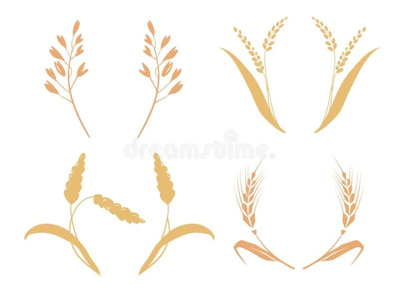 Korn för helt bröd eller öra för produkter för sädes- näringsrik råg för fält grained åkerbrukt Symboler för logodesignvete stock illustrationer