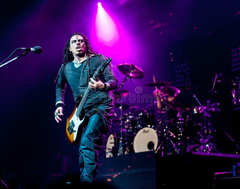 Korn konsert royaltyfri fotografi