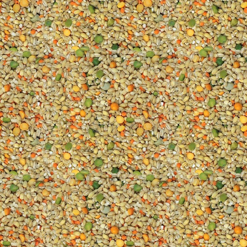 Korn und Getreide stockfoto