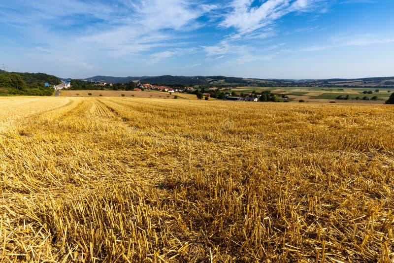 Kornfält efter skörden på Herleshausen i Tyskland royaltyfria bilder