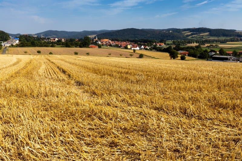 Kornfält efter skörden på Herleshausen i Tyskland fotografering för bildbyråer
