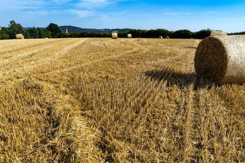Kornfält efter skörden på Herleshausen i Tyskland royaltyfria foton