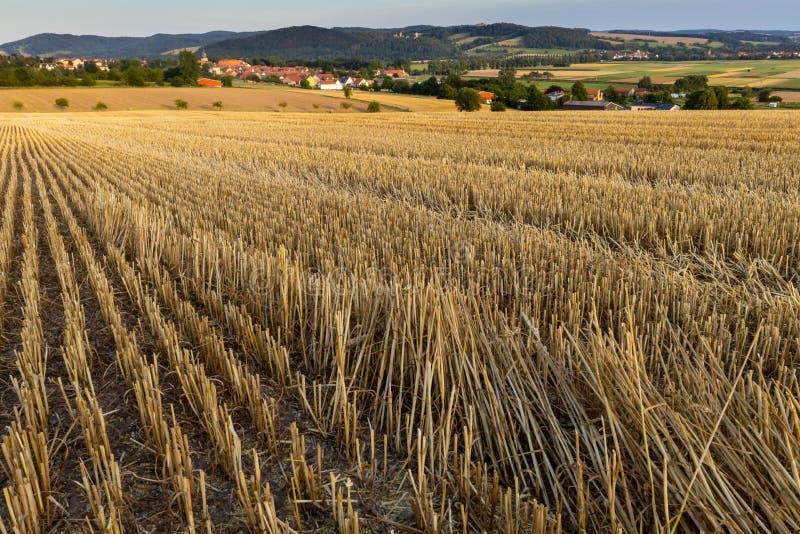 Kornfält efter skörden på Herleshausen i Tyskland royaltyfri foto