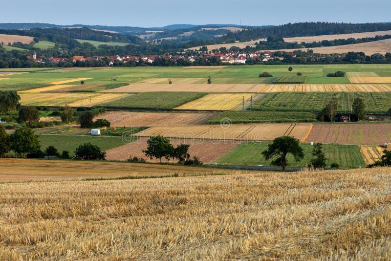 Kornfält efter skörden på Herleshausen i Tyskland arkivfoto